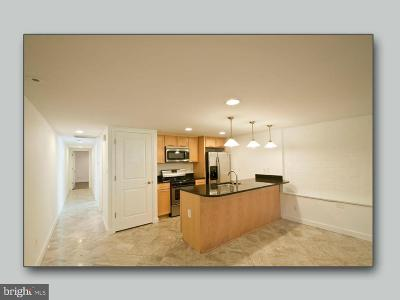 Columbia Heights Rental For Rent: 1208 Fairmont Street NW #B