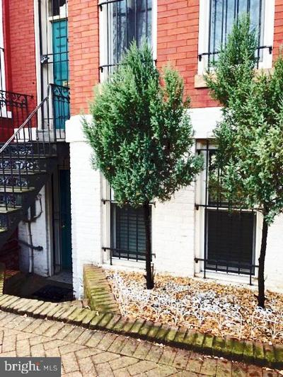 Washington Rental For Rent: 1418 Swann Street NW #B