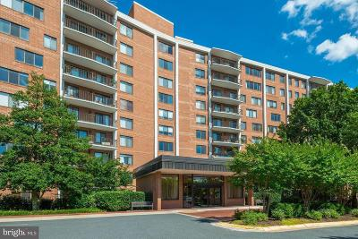 Rental For Rent: 3101 New Mexico Avenue NW #1012