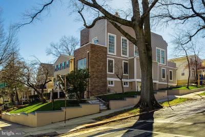 Woodridge Single Family Home For Sale: 2628 22nd Street NE