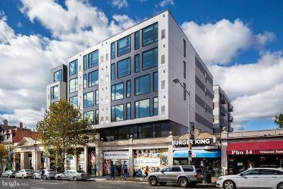 Adams Morgan Rental For Rent: 1777 Columbia Road NW #VARIES