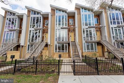 Capitol Hill Condo For Sale: 405 17th Street NE #B