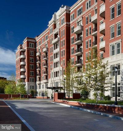 Woodley Park Rental For Rent: 2700 Woodley Road NW #PH 6