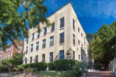 Columbia Heights Condo For Sale: 1437 Spring Road NW #B1