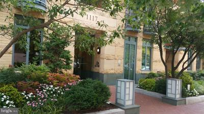 Rental For Rent: 1117 10th Street NW #702