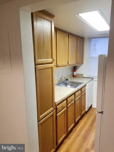 Washington Rental For Rent: 724 Brandywine Street SE #201