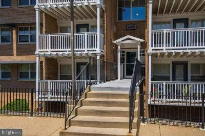 Washington Condo Active Under Contract: 2609 Douglass Road SE #201