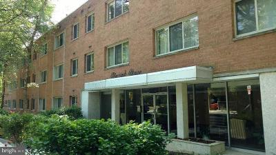Washington Condo For Sale: 2710 Macomb Street NW #311