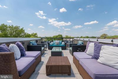 Petworth Condo For Sale: 4109 5th Street NW #B