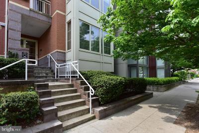 Columbia Heights Condo For Sale: 1464 Harvard Street NW #2