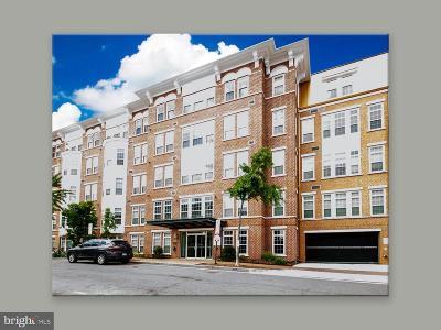 Washington Condo For Sale: 1451 Belmont Street NW #408