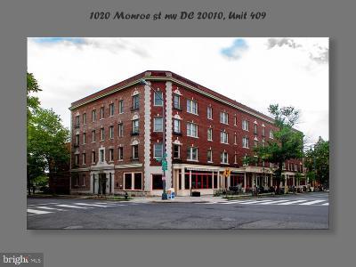 Rental For Rent: 1020 Monroe Street NW #409