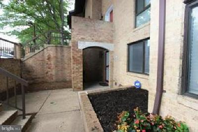 Petworth Rental For Rent: 3095 Hawthorne Drive NE #3095