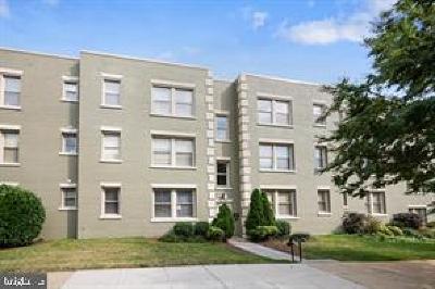 Washington Condo For Sale: 4411 1st Place NE #8