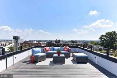 Columbia Heights Condo For Sale: 1461 Chapin Street NW #4