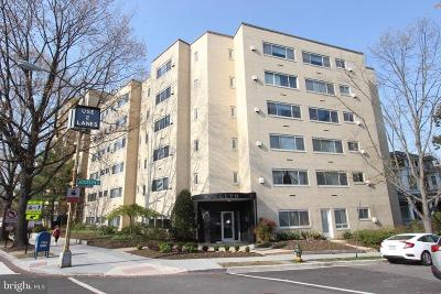 Condo For Sale: 5315 Connecticut Avenue NW #206