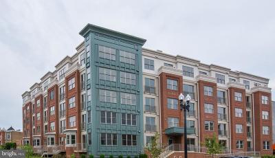 Capitol Hill Condo For Sale: 1350 Maryland Avenue NE #516