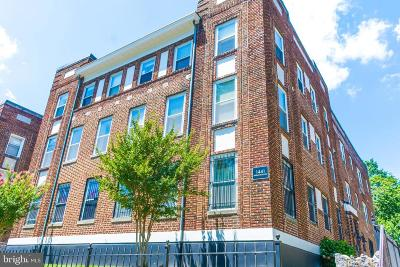 Columbia Heights Single Family Home For Sale: 1441 Spring Road NW #304