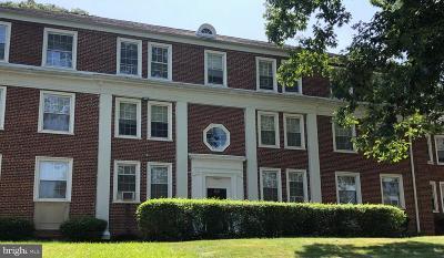 Washington Coop Active Under Contract: 2720 Terrace SE #593