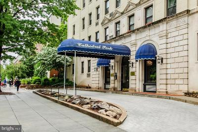 Woodley Park Condo For Sale: 3100 Connecticut Avenue NW #229