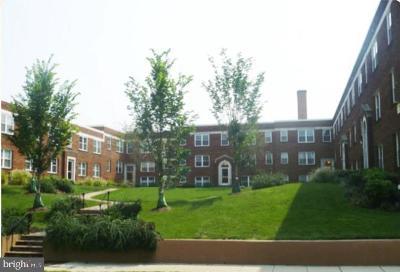Rental For Rent: 203 16th Street NE #6