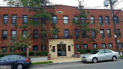 Rental For Rent: 3725 12th Street NE #109