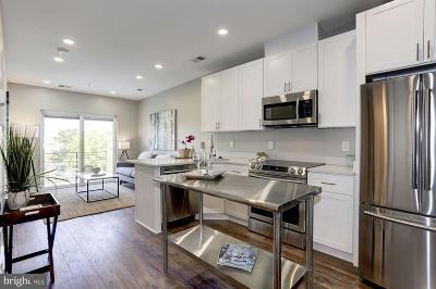 Washington Condo For Sale: 3110 Georgia Avenue NW #501