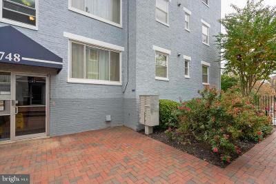 Washington Condo For Sale: 748 Brandywine Street SE #101