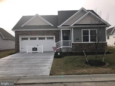 Dover Single Family Home For Sale: Lot 54 Platinum Drive