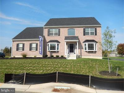 Dover Single Family Home For Sale: 688 Brookfield Drive