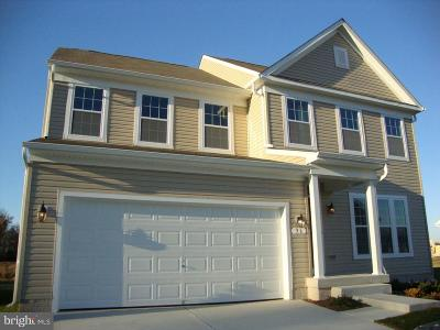 Magnolia Single Family Home For Sale: 75 Julie Court