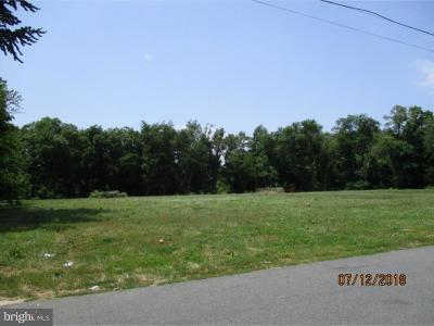 Milford Residential Lots & Land For Sale: 402 Truitt Avenue