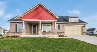 Dover Single Family Home For Sale: 155 Fairmount Ln