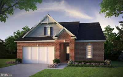 Dover Single Family Home For Sale: 19 Skipping Stone Ln- The Harrington