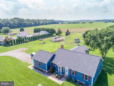 Camden Single Family Home For Sale: 1395 Pony Track Road