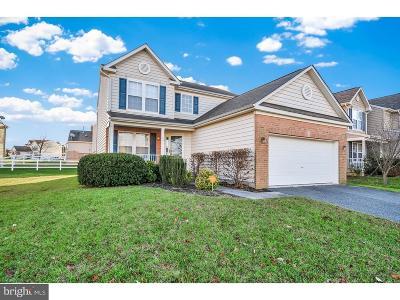Kent County Single Family Home For Sale: 15 Gooseneck Lane