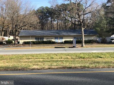 Felton Commercial For Sale: 7071 S Dupont Highway