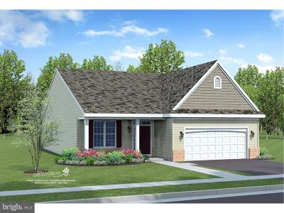Smyrna Single Family Home For Sale: 02a E Clarendon Drive