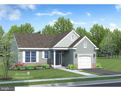 Smyrna Single Family Home For Sale: 01b E Clarendon Drive