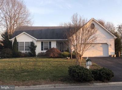 Kent County Single Family Home For Sale: 150 Church Creek Drive