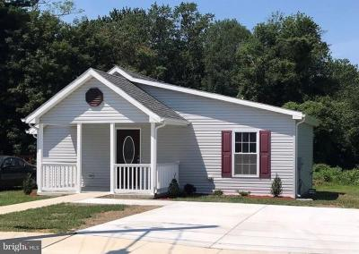 Milford Single Family Home For Sale: 514 Truitt Avenue