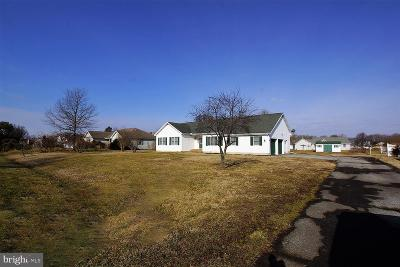 Dover Single Family Home For Sale: 541 Dyke Branch Road