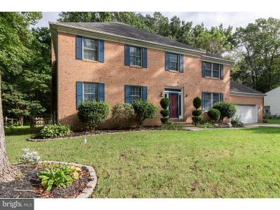 Dover Single Family Home For Sale: 299 Troon Road
