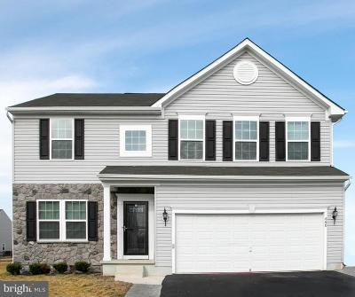 Kent County Single Family Home For Sale: 660 Cold Water Drive
