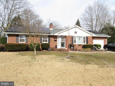 Smyrna Single Family Home For Sale: 380 Lake Drive