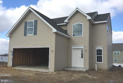 Camden Single Family Home For Sale: 54 Silver Fir Drive