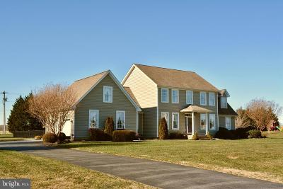 Kent County Single Family Home For Sale: 1172 Raven Circle