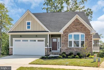 Smyrna Single Family Home For Sale: 1321 Climbing Vine Avenue