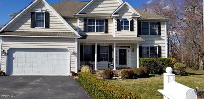 Dover Single Family Home For Sale: 47 Wildberry Drive