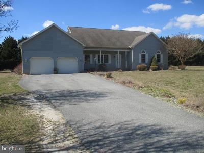 Harrington Single Family Home For Sale: 40 S Wrens Way